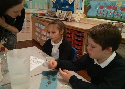 Year 5 Science 2016 001