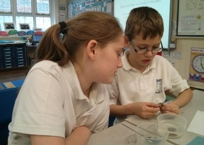 Year 5 Science 2016 002
