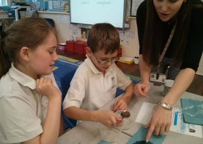 Year 5 Science 2016 006